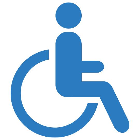 cadira amfíbia